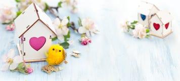 Décoration de Pâques avec la fleur de pomme Photo libre de droits