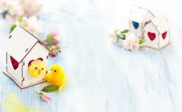 Décoration de Pâques avec la fleur de pomme Photos stock
