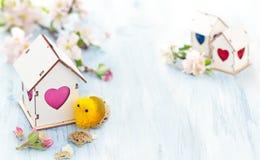 Décoration de Pâques avec la fleur de pomme Photos libres de droits