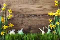Décoration de Pâques, Gras, l'espace de copie Image stock