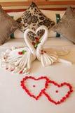 Décoration de pétale de cygne et de fleur d'amour Images stock