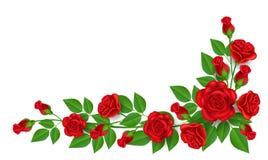 Décoration de rose de rouge pour le coin Photographie stock