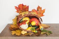 Décoration de thanksgiving Image stock