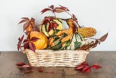 Décoration de thanksgiving Photo stock