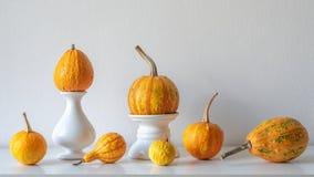 Décoration de thanksgiving L'automne minimal a inspiré la décoration de pièce Sélection de divers potirons sur l'étagère blanche image stock