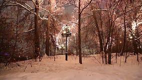 Décoration de vacances de nouvelle année de Noël à Moscou la nuit, Russie-- Moineau HillsVorobyovy sanglant banque de vidéos