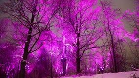 Décoration de vacances de nouvelle année de Noël à Moscou la nuit, Russie-- Moineau HillsVorobyovy sanglant clips vidéos