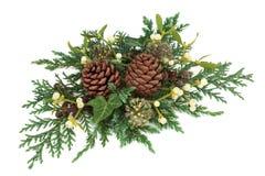 Décoration de verdure d'hiver Images libres de droits