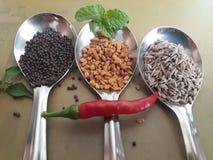 Décoration des épices dans trois cuillerées à soupe images stock