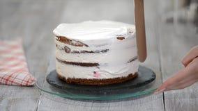 Décoration du gâteau avec de la crème Gâteaux principaux culinaires de conception de classe, gâteau crème pendant des vacances clips vidéos