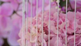 Décoration du lieu de rendez-vous avec des orchidées Fin vers le haut banque de vidéos