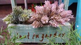 Décoration du panier de jardin d'agrément Images libres de droits