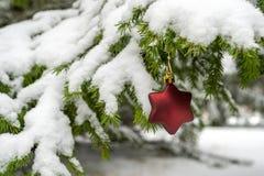 Décoration en forme d'étoile de Noël images stock