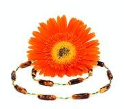 Décoration et fleur de femme Image stock