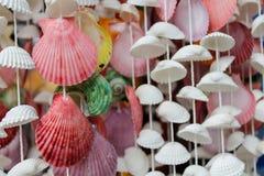 Décoration faite de différentes coquilles de couleur sur thred Photos stock