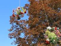 Décoration florale d'automne clips vidéos