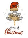 Décoration graphique de carte de voeux de Noël d'abrégé sur tiré par la main vecteur avec le concept en feuille de palmier tropic Photographie stock