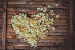 Décoration rustique de mariage de cadre de cerf de fleurs de pétales Photos stock