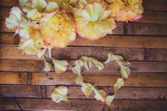 Décoration rustique de mariage de cadre de cerf de fleurs de pétales Image libre de droits