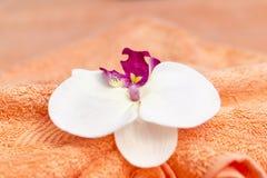 Décoration thaïlandaise de massage Photographie stock libre de droits