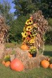 Décorations 2 d'automne Photos libres de droits