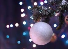 Décorations blanches de jouet de boule sur l'arbre Photographie stock libre de droits