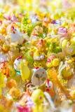 Décorations brouillées de Pâques de fond images stock