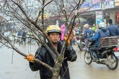 Décorations chinoises de nouvelle année au Vietnam Image stock