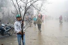 Décorations chinoises de nouvelle année au Vietnam Photographie stock