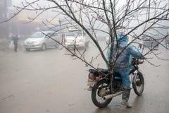 Décorations chinoises de nouvelle année au Vietnam Photo stock