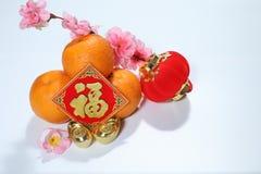 Décorations chinoises de nouvelle année avec la lanterne rouge et le Fook photo stock