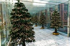 Décorations d'arbre de Noël dans le passage couvert inclus en verre Images libres de droits
