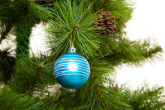 Décorations d'isolement de Noël-arbre 2016 bonnes années Images libres de droits