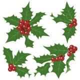 Décorations de houx de Noël Photo libre de droits