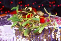 Décorations de Noël avec des branches de guis image libre de droits