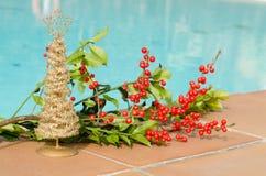 Décorations de Noël dans la piscine images libres de droits