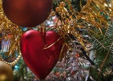 Décorations de Noël sur la branche photographie stock