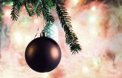 Décorations de Noël sur la branche Le fond du verre givré photos libres de droits