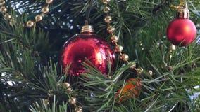 Décorations de Noël sur un arbre de sapin Photos libres de droits