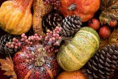 Décorations de potiron d'automne de récolte photographie stock