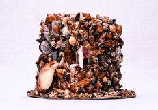 Décorations de Seashell photo stock