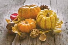 Décorations de thanksgiving sur le fond rustique Photographie stock libre de droits