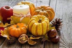 Décorations de thanksgiving sur le fond rustique Photos libres de droits