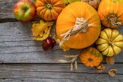 Décorations de thanksgiving sur le fond rustique Image stock