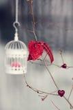 Décorations de Valentine Cage à oiseaux avec tricoté Images libres de droits