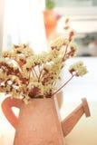 Décorations des fleurs jaunes minuscules de gypso Photographie stock