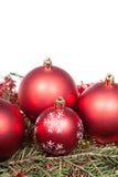 Décorations rouges de Noël sur la branche d'arbre verte Images libres de droits