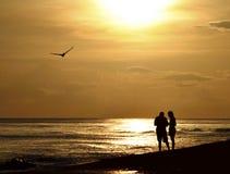 Décorticage au coucher du soleil sur Sanibel Photos stock