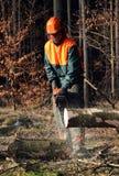 Découpage de bois de construction, ouvrier de forêt Photos stock