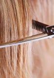 Découpage de cheveu Photo stock